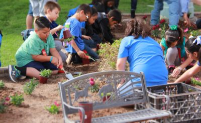 Kids and adults planting flowers in a garden